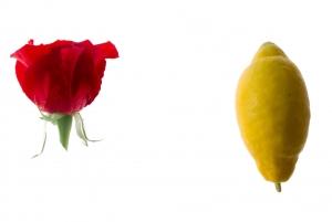 A menstruáció és a citromlé: milyen kapcsolat van köztük?